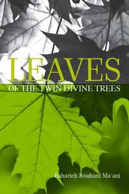 LeavesTwinDivineTrees