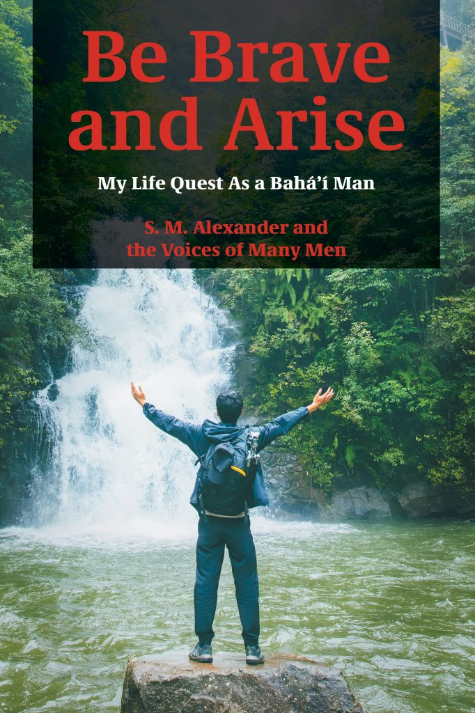 """Be Brave and Arise"" book cover"